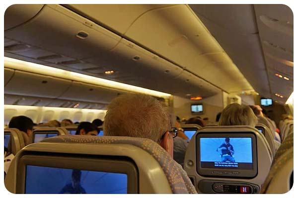 Permanecer Sano Mientras Viaja avion