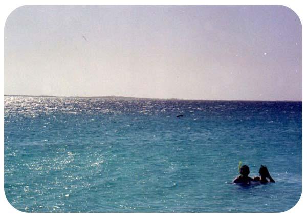 buceo archipielago de los roques